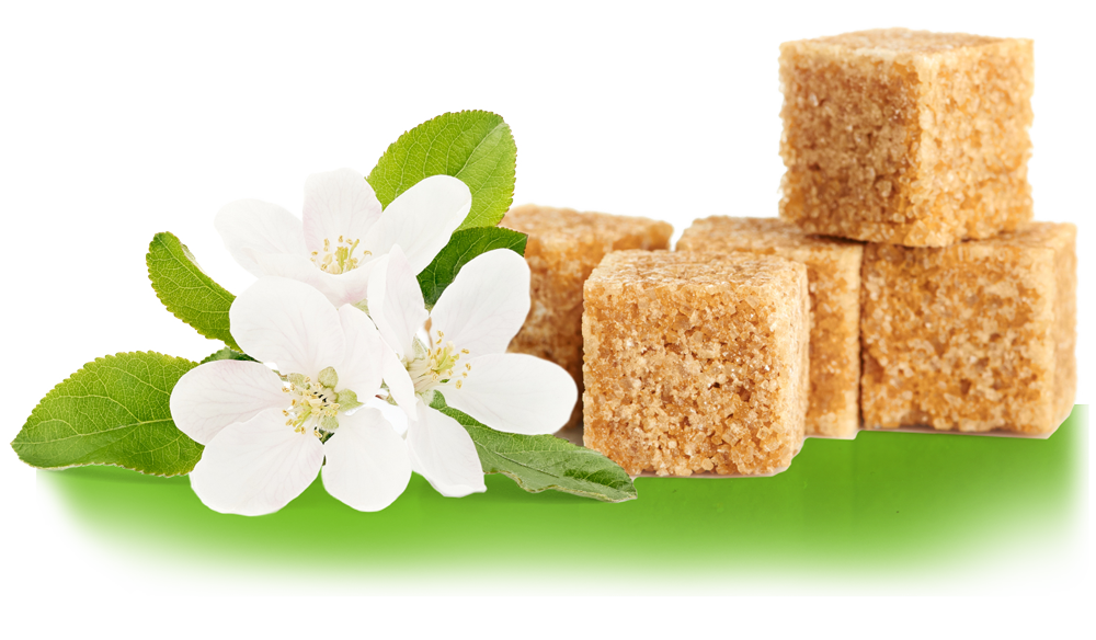 Brown Sugar Cubes laying by flowers